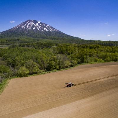 Mt Yotei Niseko