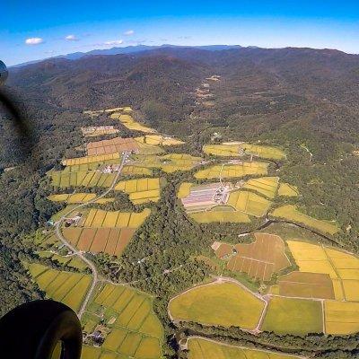 Hokkaido rice fields